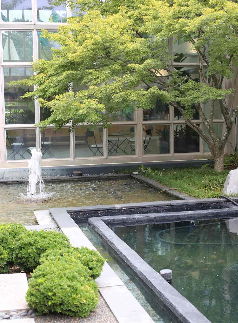 Water garden scene with trees.