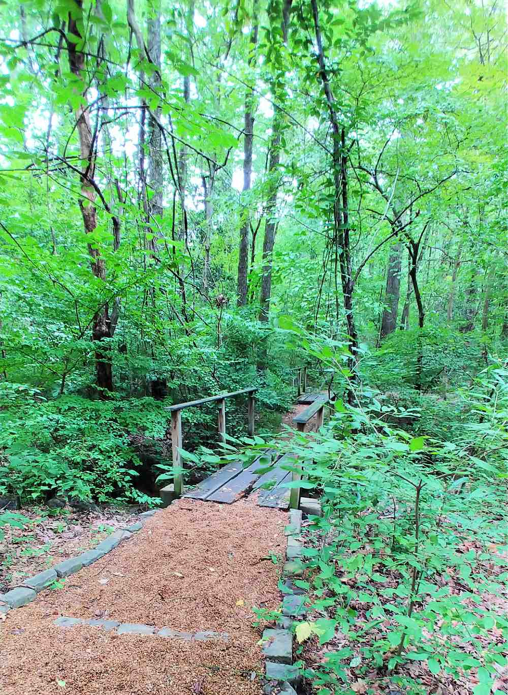 Paved woodland trail at Memphis Botanic Garden