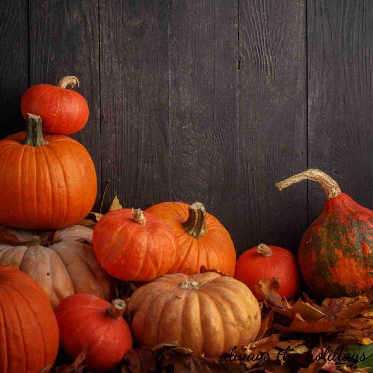 Stack of fall pumpkins.