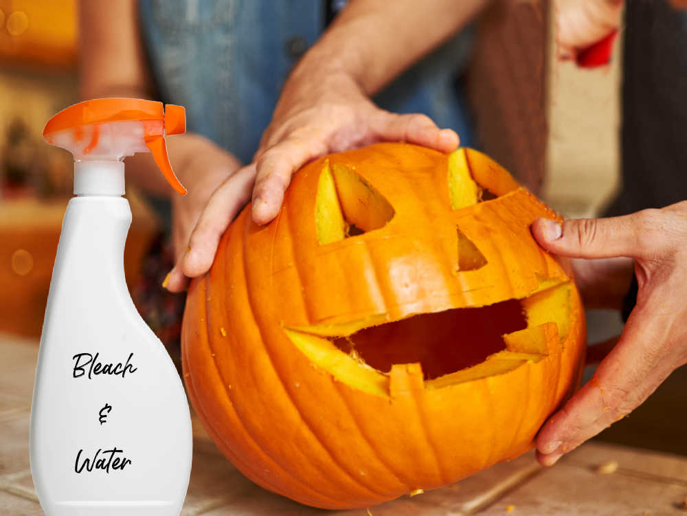 Carved pumpkin with bottle of bleach and water to preserve it.