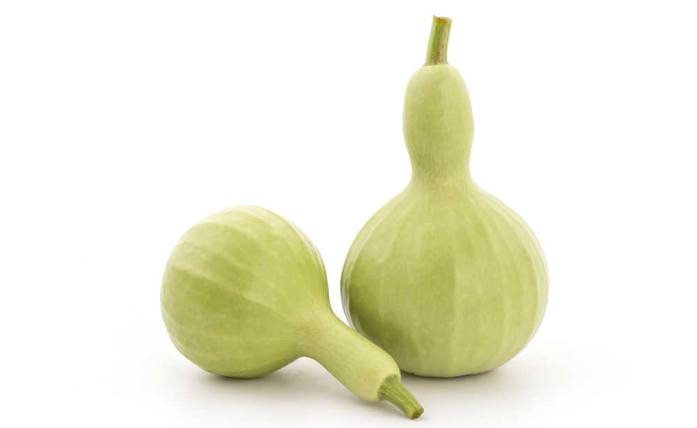 Bottle gourds on a white background.