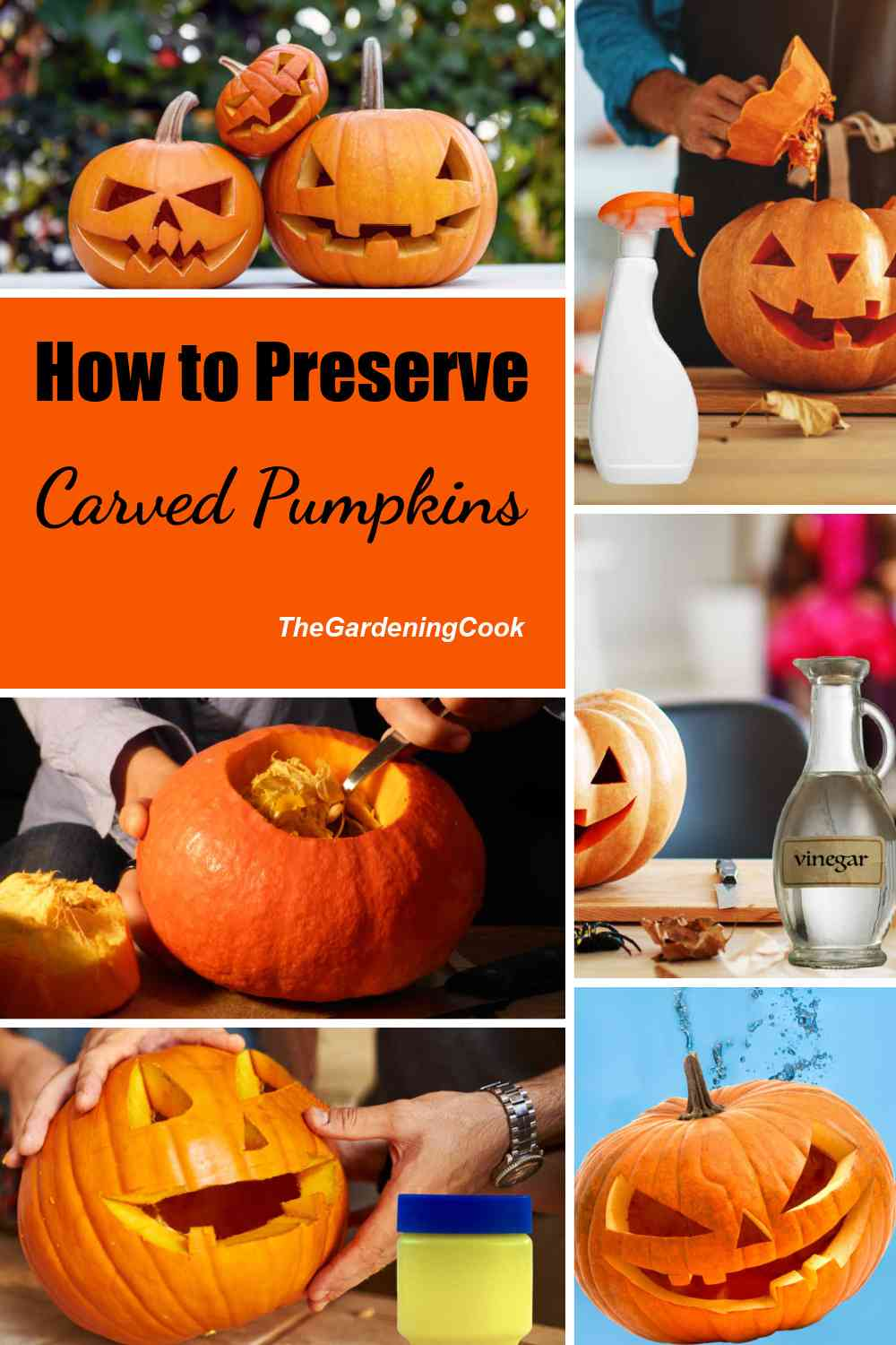 Pumpkins and pumpkin carving in a collage with words How to preserve carved pumpkins.