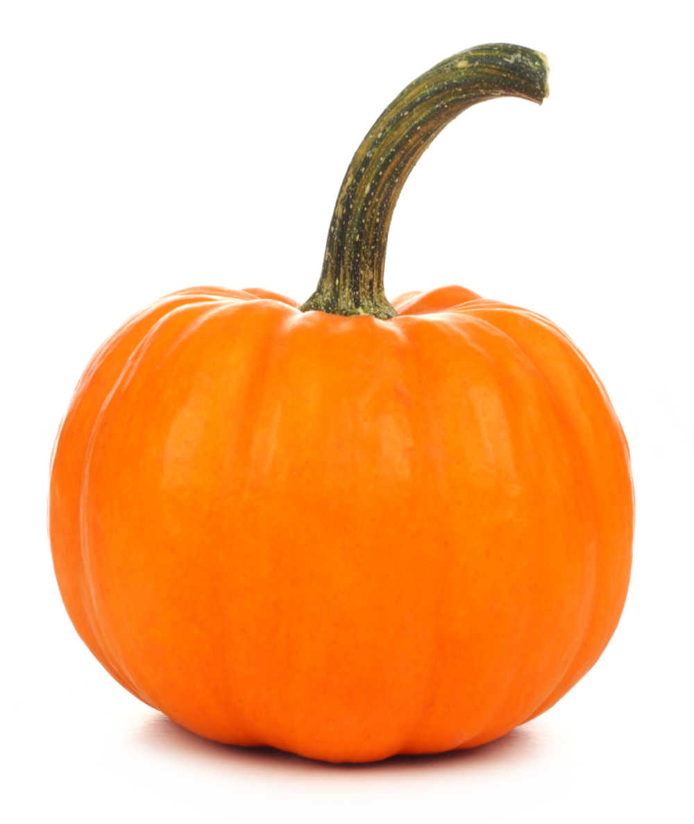 Pumpkin with a long handle on a white background.