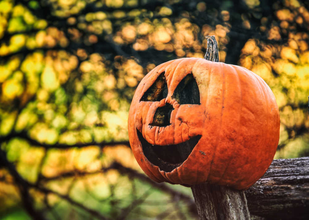 Rotting pumpkin on a post.