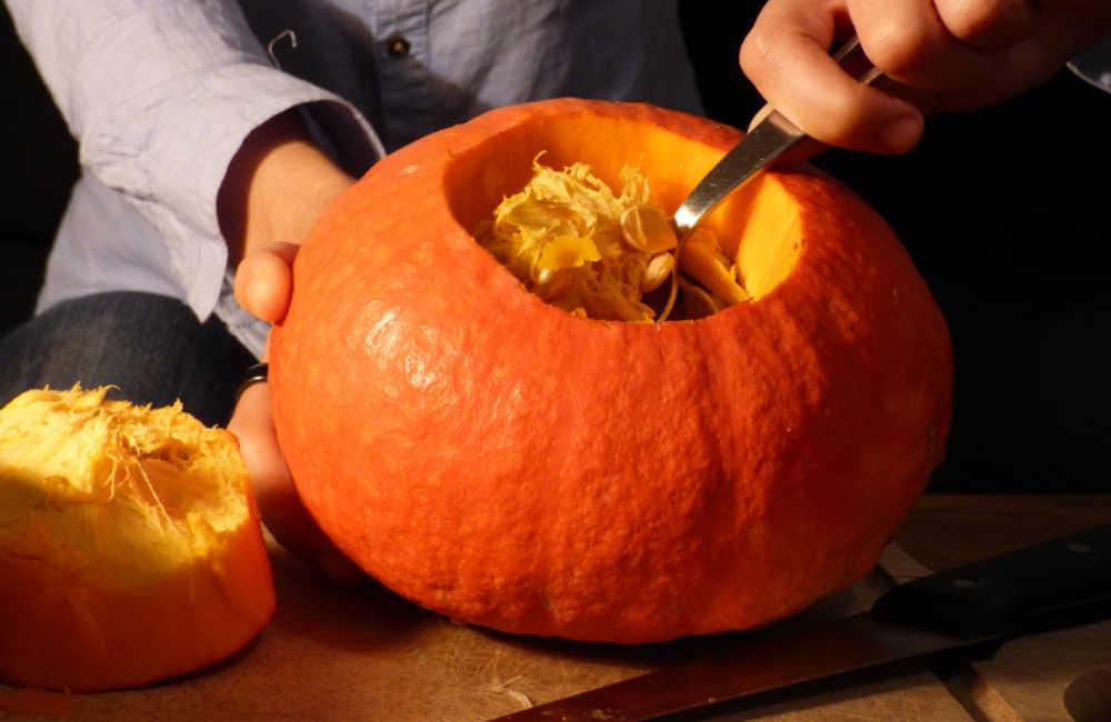 Hands scooping pumpkin seeds out of a pumpkin.