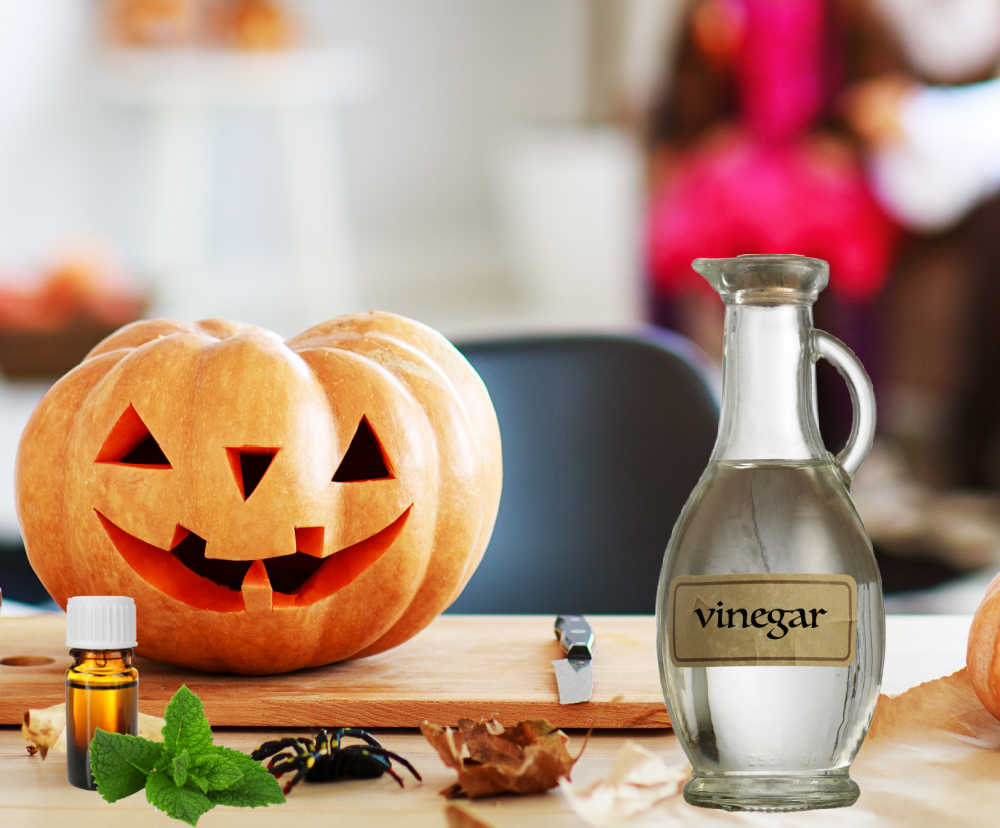 Bottle of white vinegar and peppermint oil near a carved pumpkin. Environmental ways to preserve pumpkins.